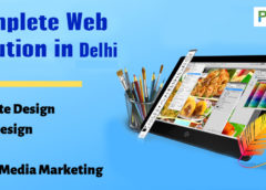 Website Design in Rohini Delhi