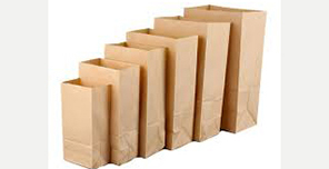 Paper Carry Bag Manufacturer in Rohini